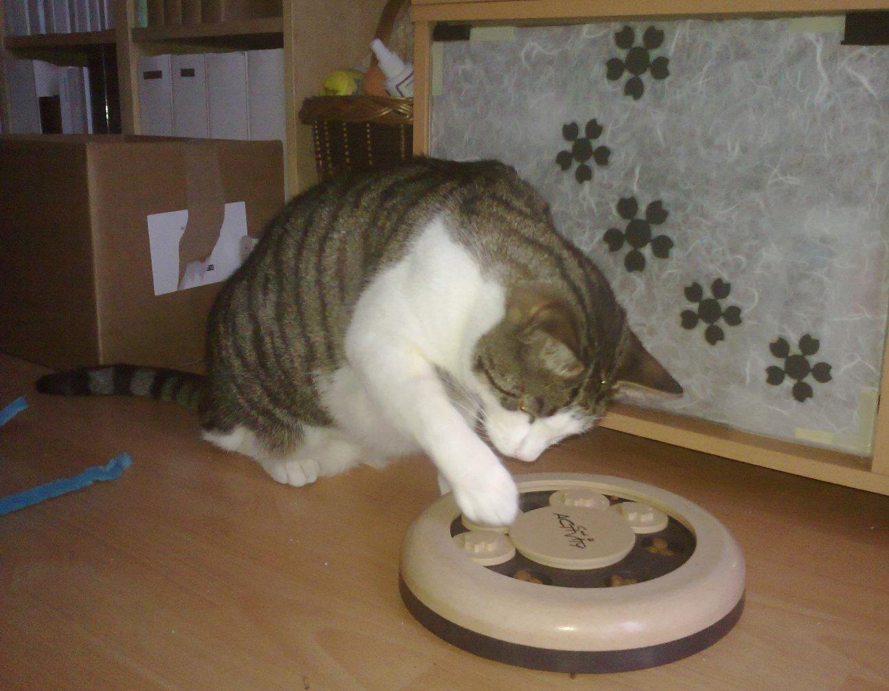 Emil finder mad